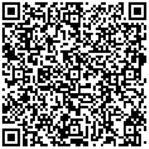 elektronische Visitenkarte Patrick Pellegrini